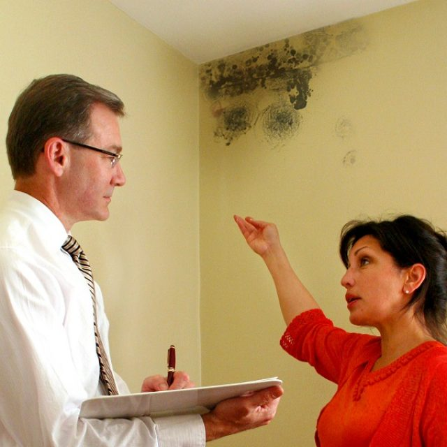 Why is it important to test your house for mold?
