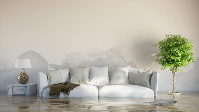 How to deal with water damage