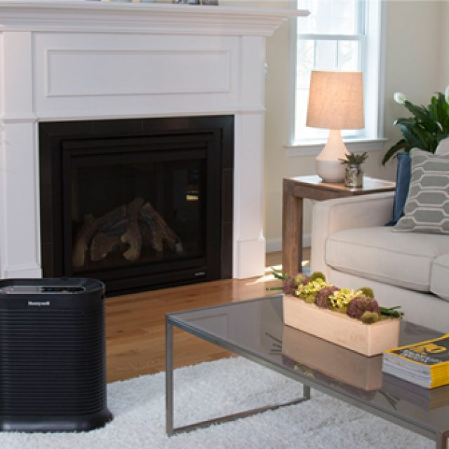 The importance of reading reviews before buying an air purifier