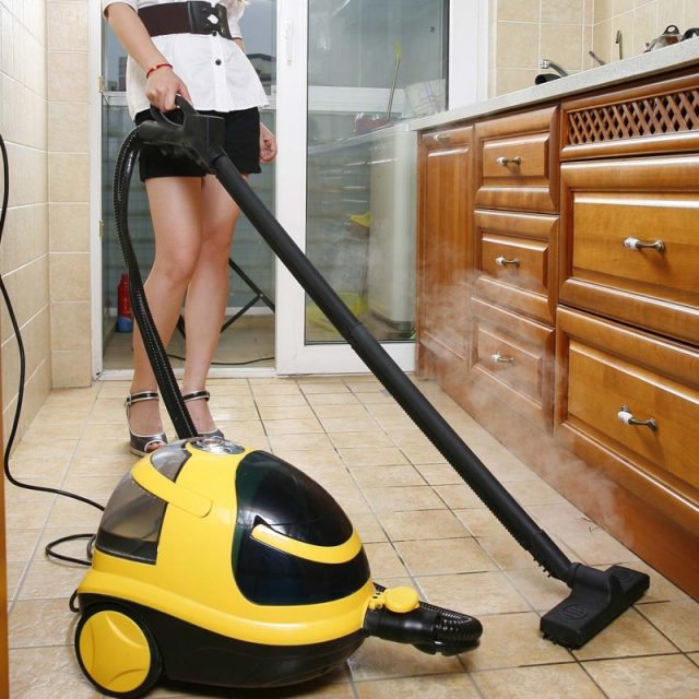Buying a steam cleaner – the importance of reading reviews