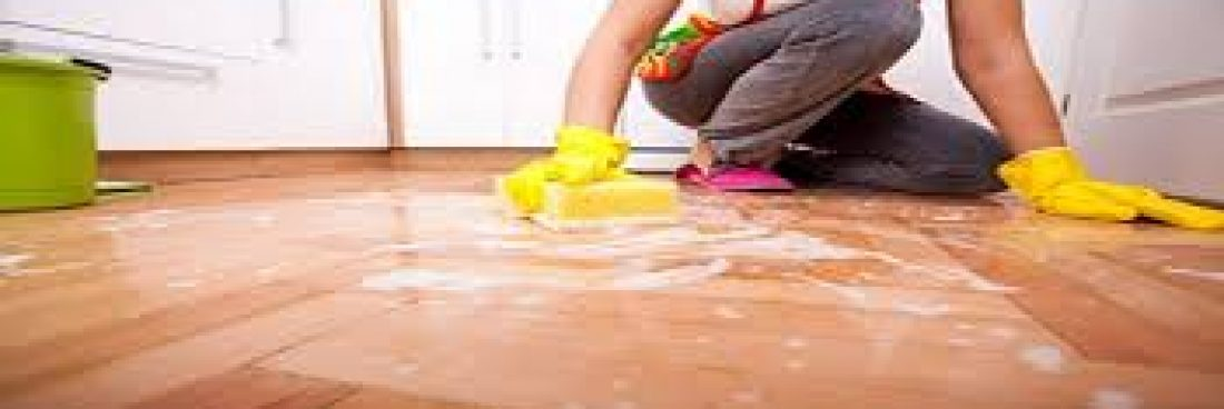 Tips for Cleaning Your House Like a pro