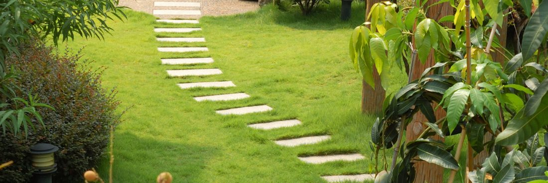 Finding the right specialists for your garden landscape project