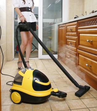 Buying a steam cleaner - the importance of reading reviews