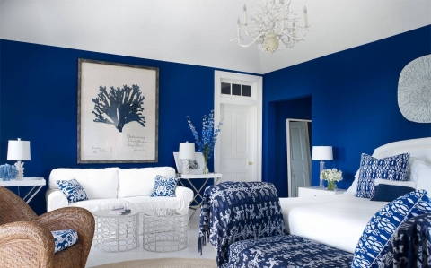 Cobalt Blue Home Decor Ideas Picture