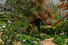 Designing-your-first-garden-Here_s-what-you-should-know