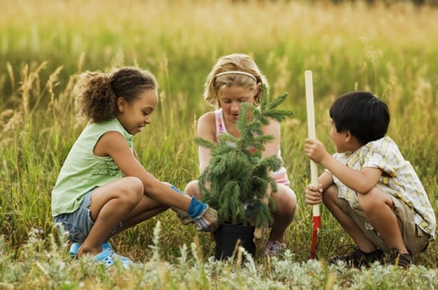 Ecological awareness - teaching kids about environmental protection