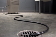 How to Get Rid of the Basement Mold