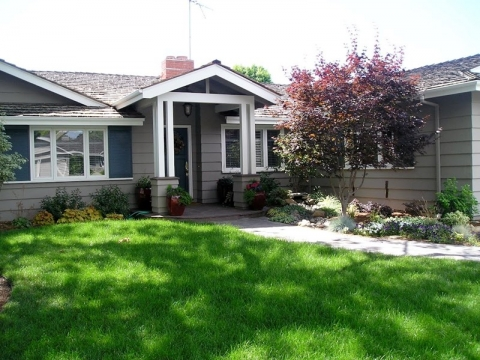 Lawn management - How to enjoy a seamless and pest free lawn