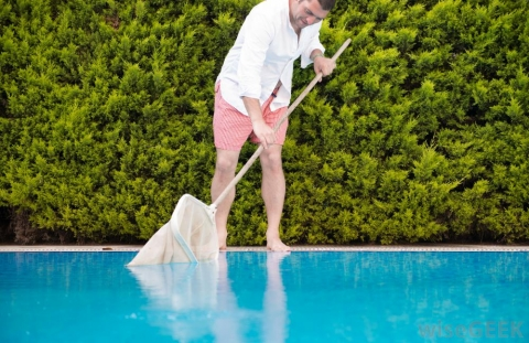 Simple Ways to Clean Your Pool Faster Picture