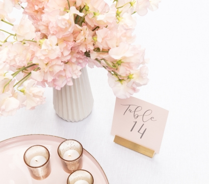 Wedding planning - meeting deadlines without exceeding the limited budget